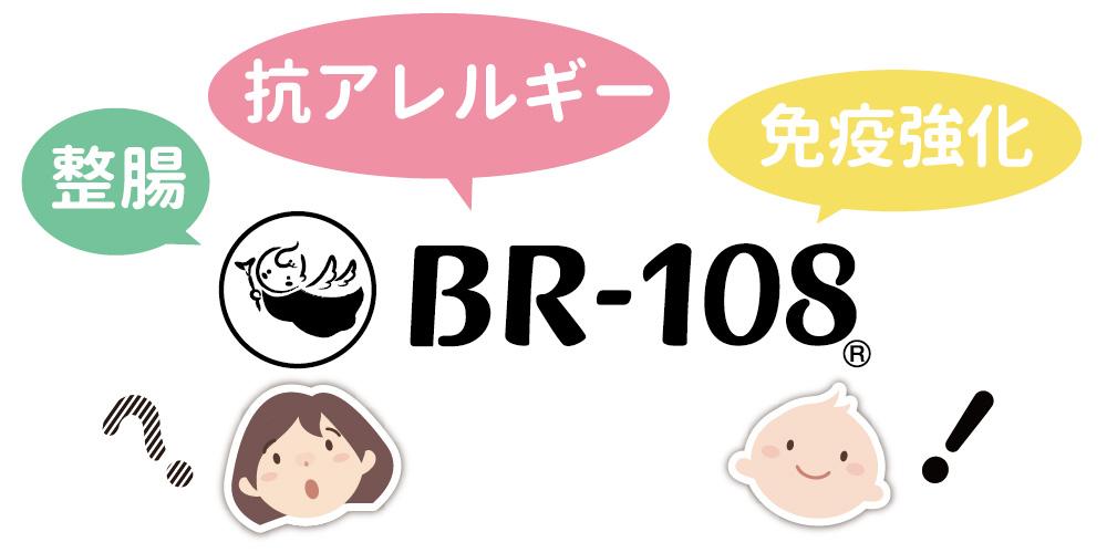BR-108って?